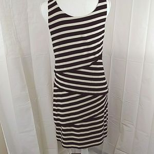 Ann Taylor Loft Womens Small Dress